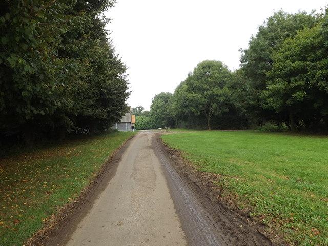 Hall Road, Tivetshall St Margaret
