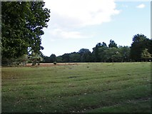 SZ0287 : Brownsea Heath by Gordon Griffiths