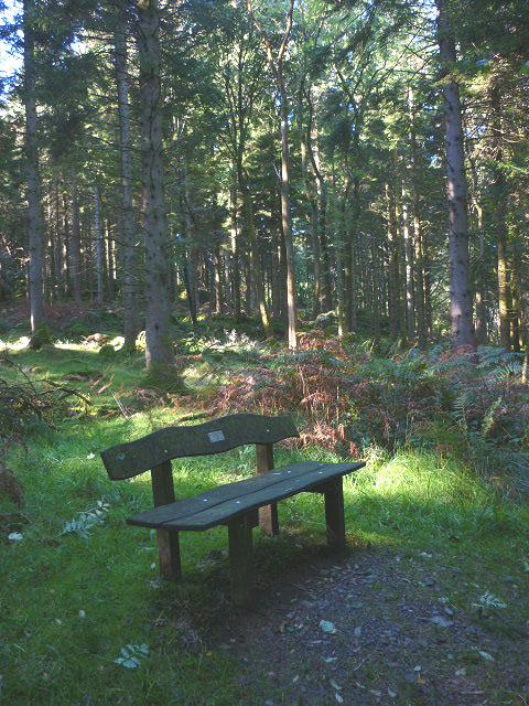 Memorial seat, Back Knott Wood