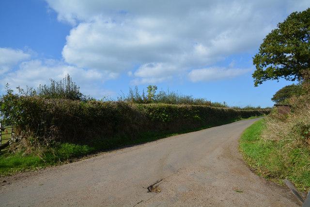 North Devon : Deneridge Hill