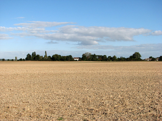 Across the fields to the edge of Grantchester