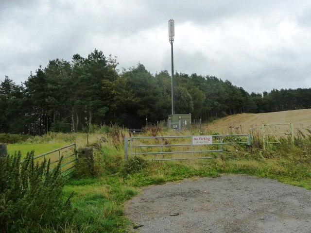 Southern of 3 masts off Holestone Gate Road