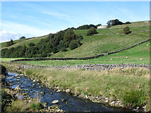 NY7346 : The valley of the River Nent at Blagill by Mike Quinn