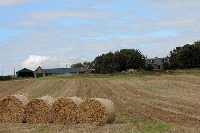 Bales before Flinthills