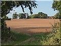 SO8641 : Field gateway by Philip Halling