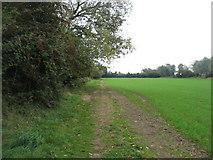 SU1896 : The Thames Path near Sterts Farm by David Purchase