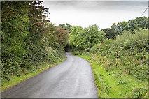 R5504 : Minor lane by David P Howard