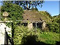 ST7684 : Derelict shed at Norton Court by Philip Halling