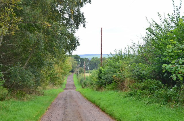 Farm road from Whitefield