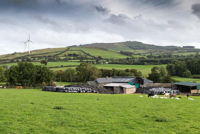 Farm south of R497