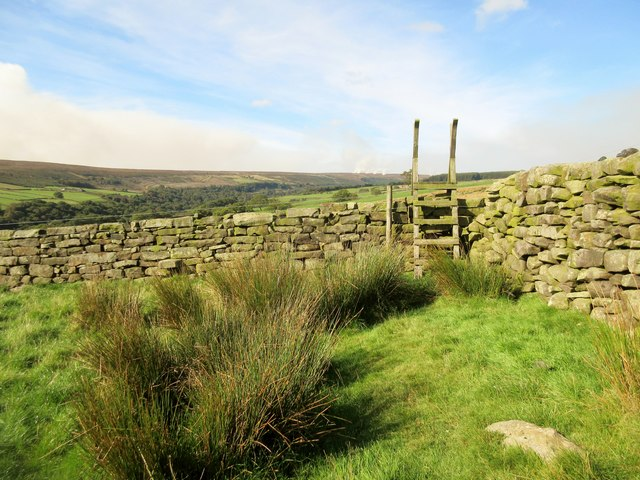 Ladder stile over stone wall