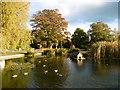 TQ5259 : The duck pond at Otford by Marathon