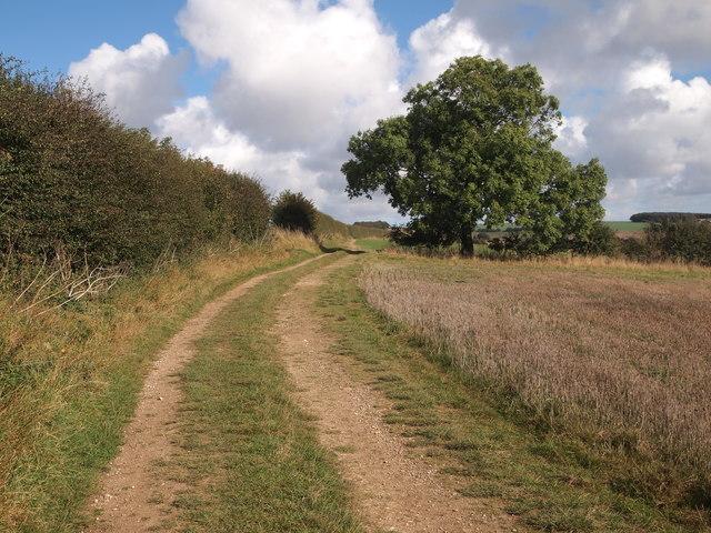 Bridleway north of William Dale
