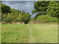 TQ3637 : Footpath goes north towards field boundary and ominous clouds by Shazz