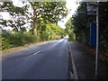 TQ3539 : Looking eastwards along Felbridge Road by Shazz