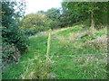 SE0927 : Fence across Halifax FP399, Northowram by Humphrey Bolton