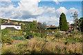 TQ1750 : Pixholme Grove Allotments by Ian Capper