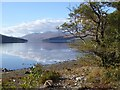 NN1489 : North shore of Loch Arkaig by Oliver Dixon