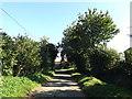TM1390 : Cargate Common Road, Tibenham by Adrian Cable