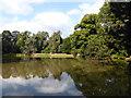 TQ4123 : Feeder Lake, Sheffield Park by PAUL FARMER
