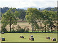 SO9155 : Field boundary with distant Malvern Hills  by Jeff Gogarty