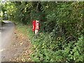TM1491 : Low Common Road & Low Common Postbox by Adrian Cable