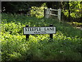 TM1591 : Steeple Lane sign by Adrian Cable