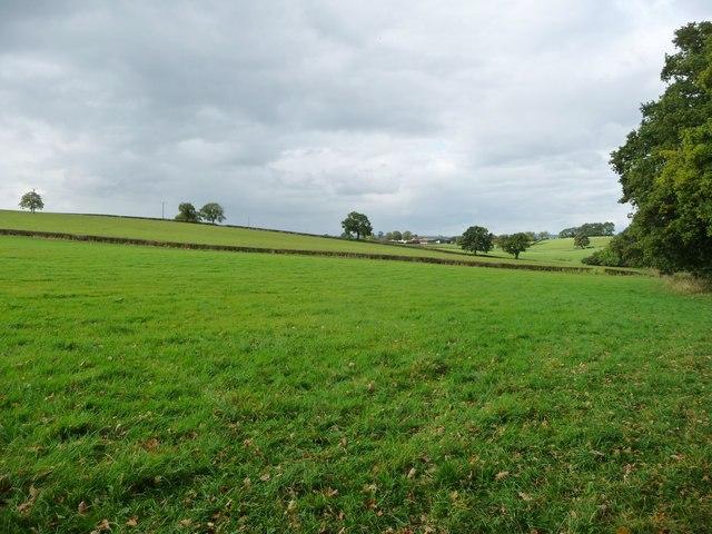 Farmland west of Dowpits Hill