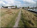 TQ9564 : The Saxon Shore Way alongside Conyer Creek by Marathon