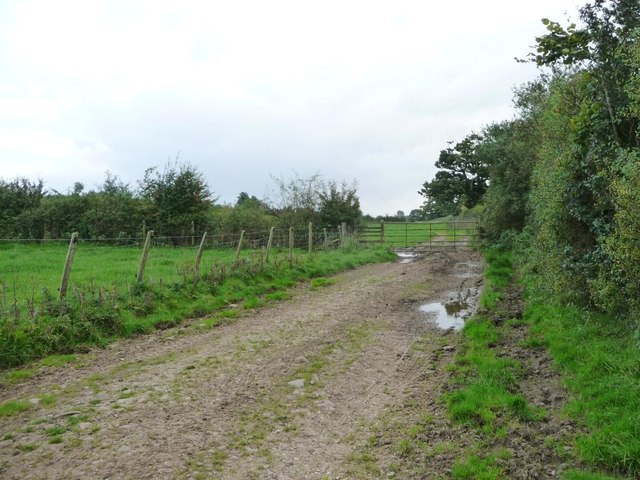 Gated farm track, south of Colby Laithes