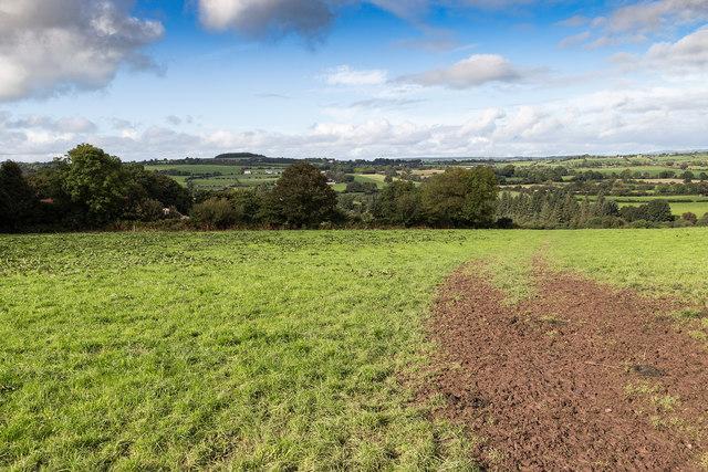 Farmland north of lane L2760 near Berrings