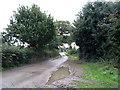 TM5084 : Minor road towards Benacre by JThomas