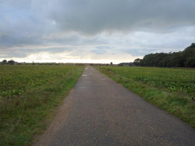 Track to Beach Farm