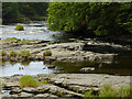 SJ2142 : The rocky bed of the River Dee near Llangollen, Denbighshire by Roger  Kidd