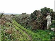 SW4028 : Wayside cross near Boswarthen by Andrew Curtis