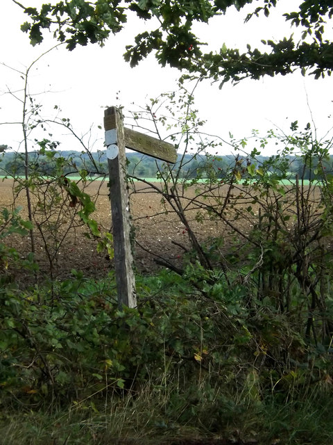 Carpenter's Walk Bridleway sign