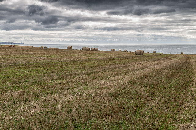 Straw bales on Coolmain Point