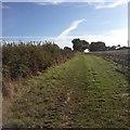 SP7434 : Paths around Thornborough by Dave Thompson