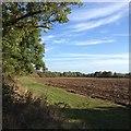 SP7534 : Paths around Thornborough by Dave Thompson