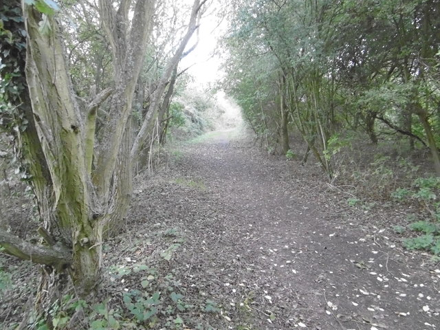 The Saxon Shore Way between Conyer Creek and The Swale