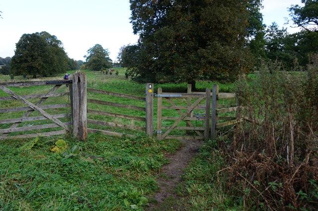 Yorkshire Wolds Way towards Londesborough