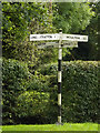 TM1891 : Signpost on Hall Lane by Adrian Cable