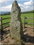 S6541 : Ogham Stone by kevin higgins