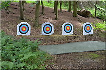 TQ5245 : Archery in the woods by N Chadwick