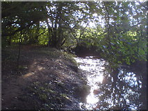 SE2332 : Pudsey Beck north of Troydale by Schlosser67