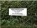 TM1785 : Marlborough Dental Laboratory sign by Adrian Cable