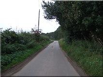TM4686 : Jay's Hill Road near Mill Farm by JThomas