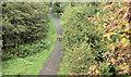 J3773 : The Comber Greenway, North Road, Belfast - October 2016(2) by Albert Bridge