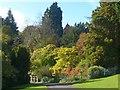 ST3087 : Autumn colours, Belle Vue Park, Newport by Robin Drayton