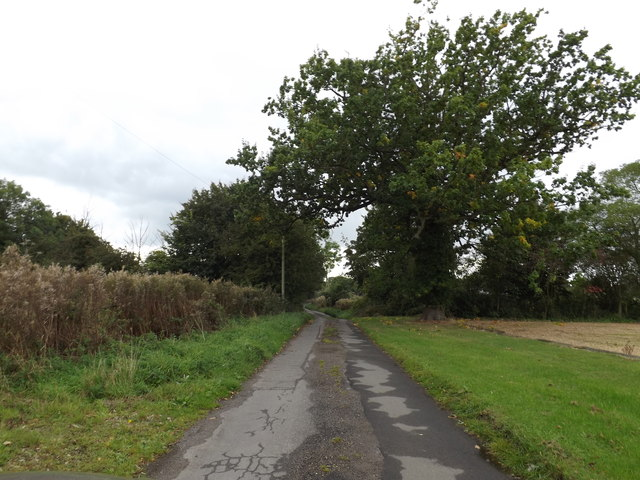 Common Road, Mill Hill